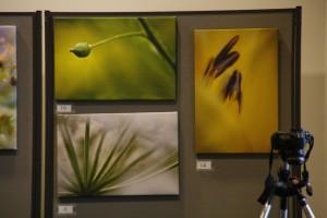 En del av Håkan Eklunds utställning