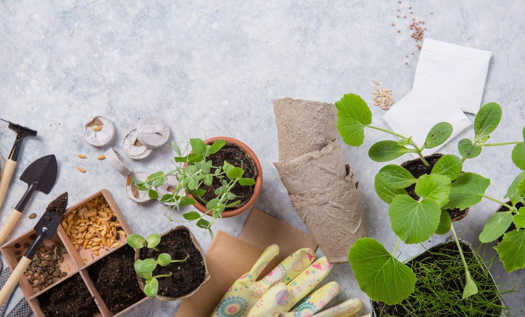 handskar, plantor och tillbehör för att odla småskaligt.
