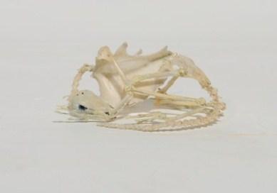 """Tilda Lovell, detalj från installationen """"Untitled Landscape"""" (video och objekt), 2013. Foto Ars Nova (pressbild)"""